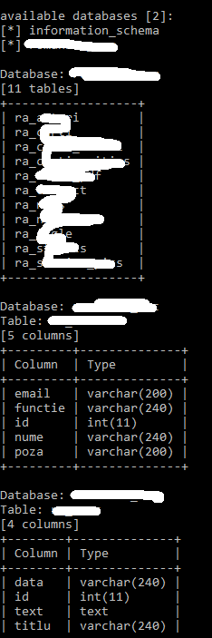 sqlmap reports 11 tables on 2 databases